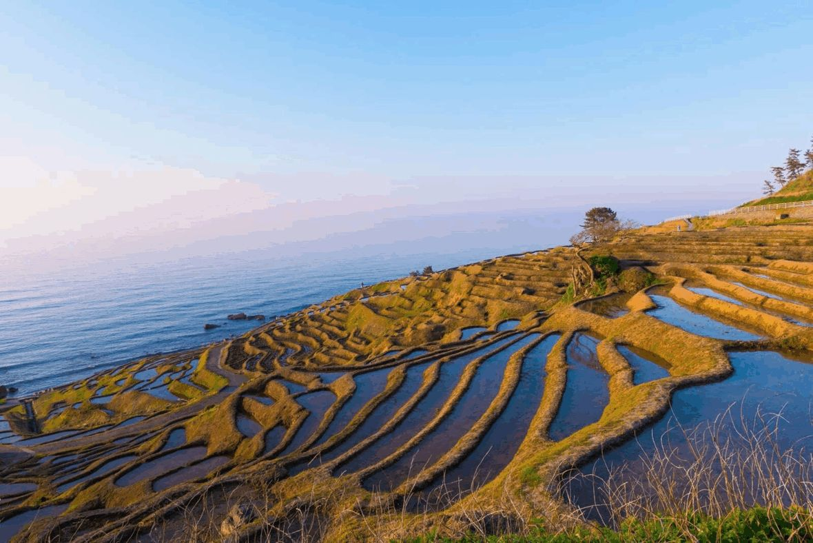 Terraced rice paddy fields to the sea