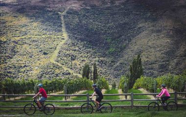 Top 10 Bicycle Day Tours of Australia and New Zealand