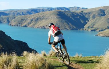 8 Best Multi-Day Cycling Tours in New Zealand
