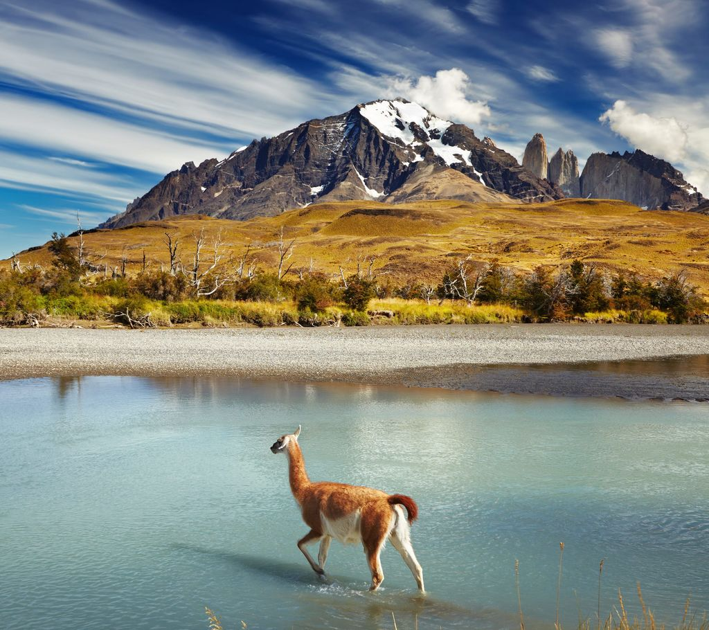 Torres del Paine NP, Chile, South America