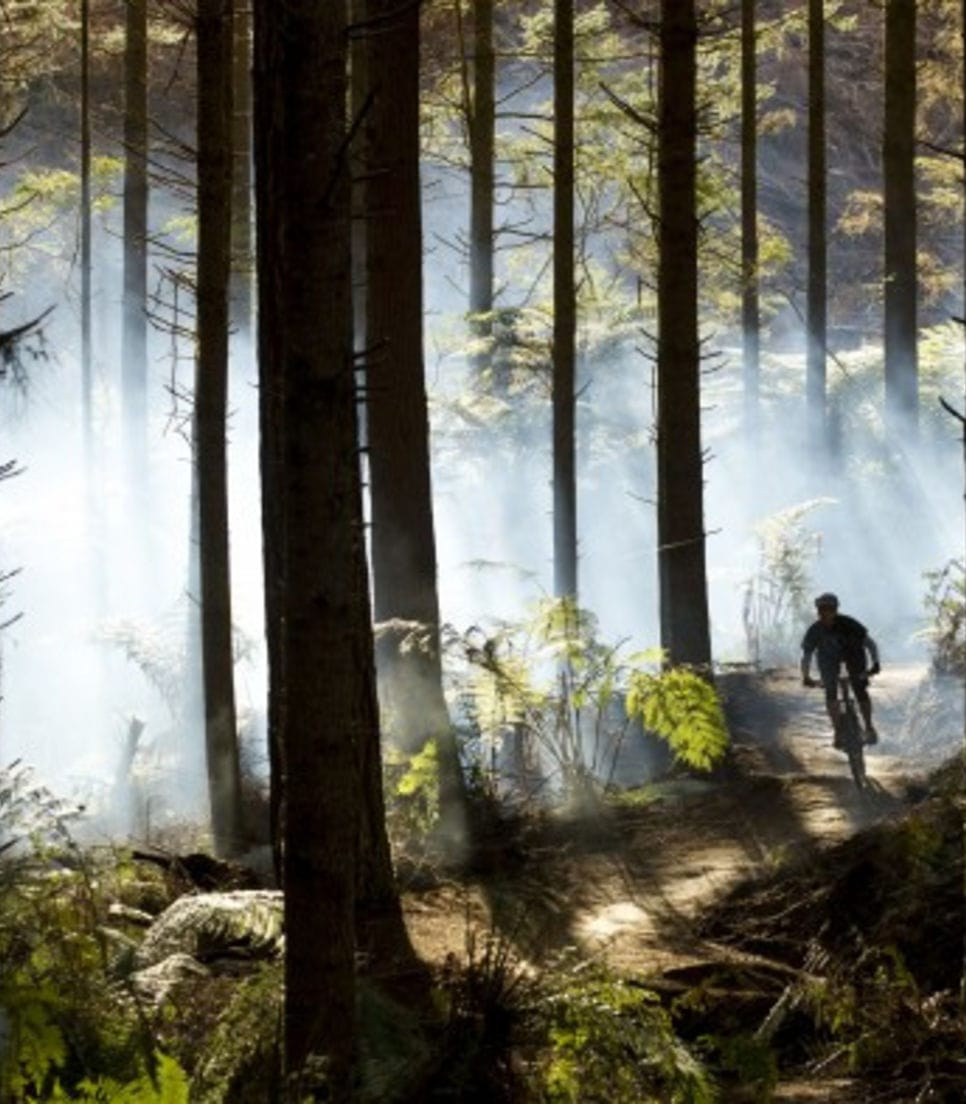 Burn rubber in one of the world's best mountain bike trails