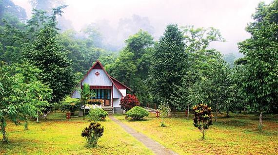 Spend the night close with nature in a guest house nestled in the forest