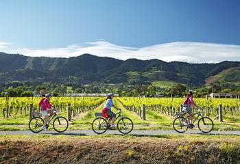 6 Days Great Taste Trio Cycling
