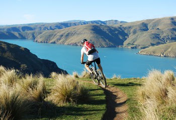 South Island Dirt Seeker MTB