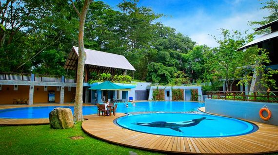 An environmentally friendly resort with cozy rooms and refreshing swimming pool