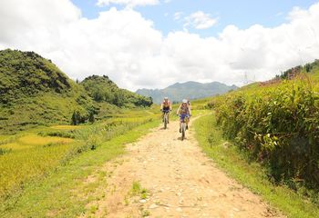 Cycling Tours of Vietnam: Trails of Dalat