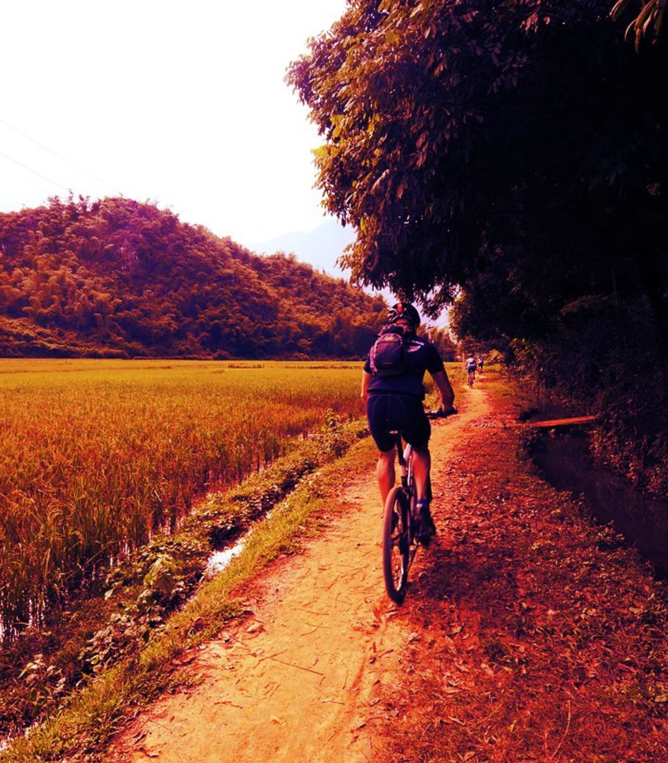 Let the natural serenity wash over you as you cycle this short tour through Vietnam
