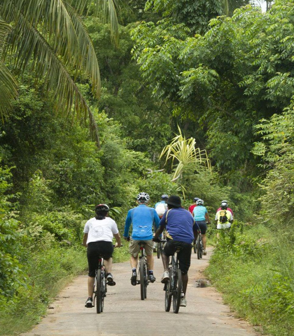 Discover the lush green landscapes of this beautiful tropical country as you explore by bike