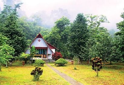 Cuc Phuong National Park Guest House