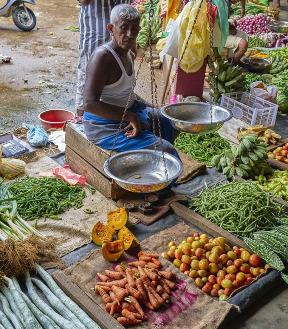 Weave through the bustling markets, getting a taste of the real Sri Lanka in every sense