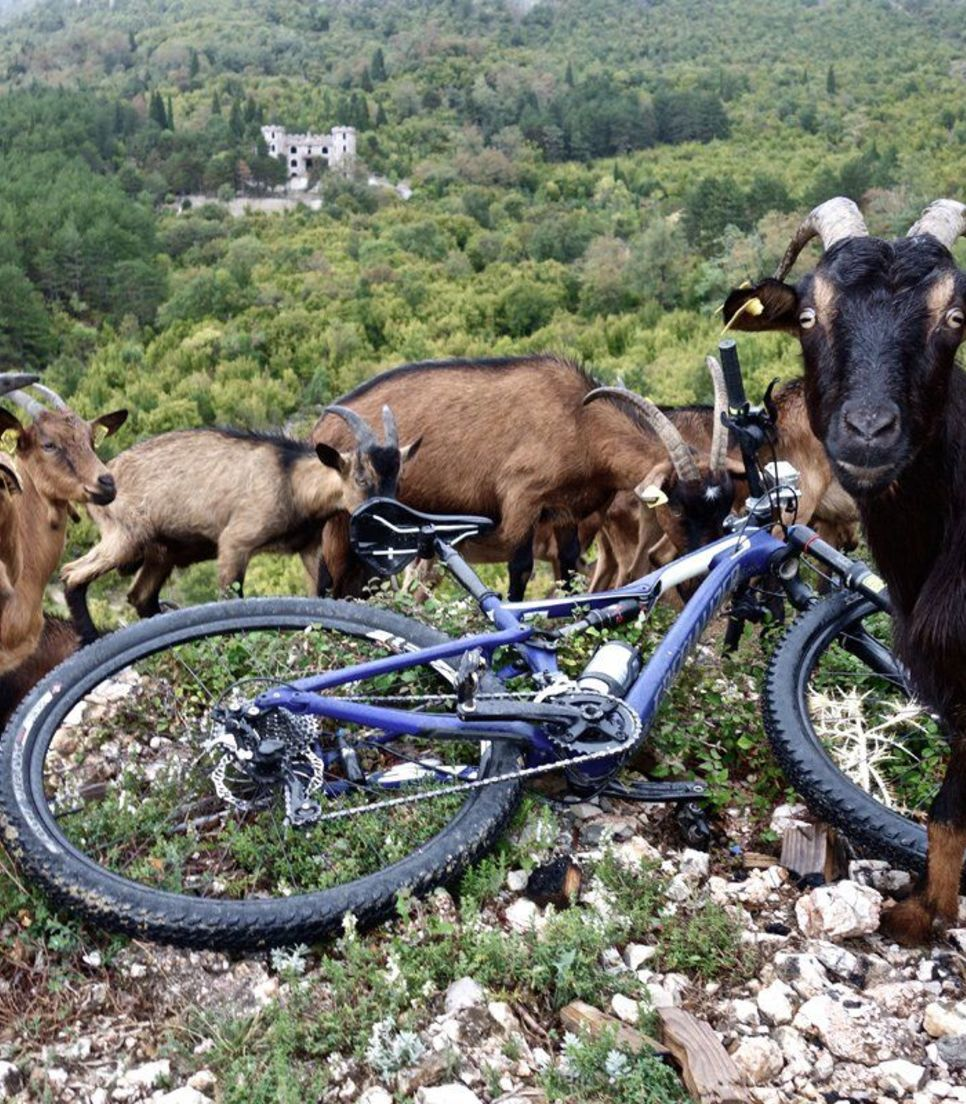 Experience the rural magic of the Balkans and meet some friendly goats along the way
