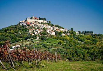 Cycle the Wine Roads of Istria