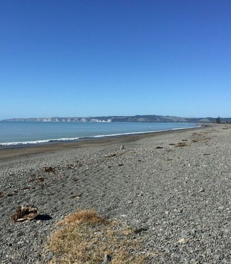 Cycle along the coastline to meet up with lovely Napier