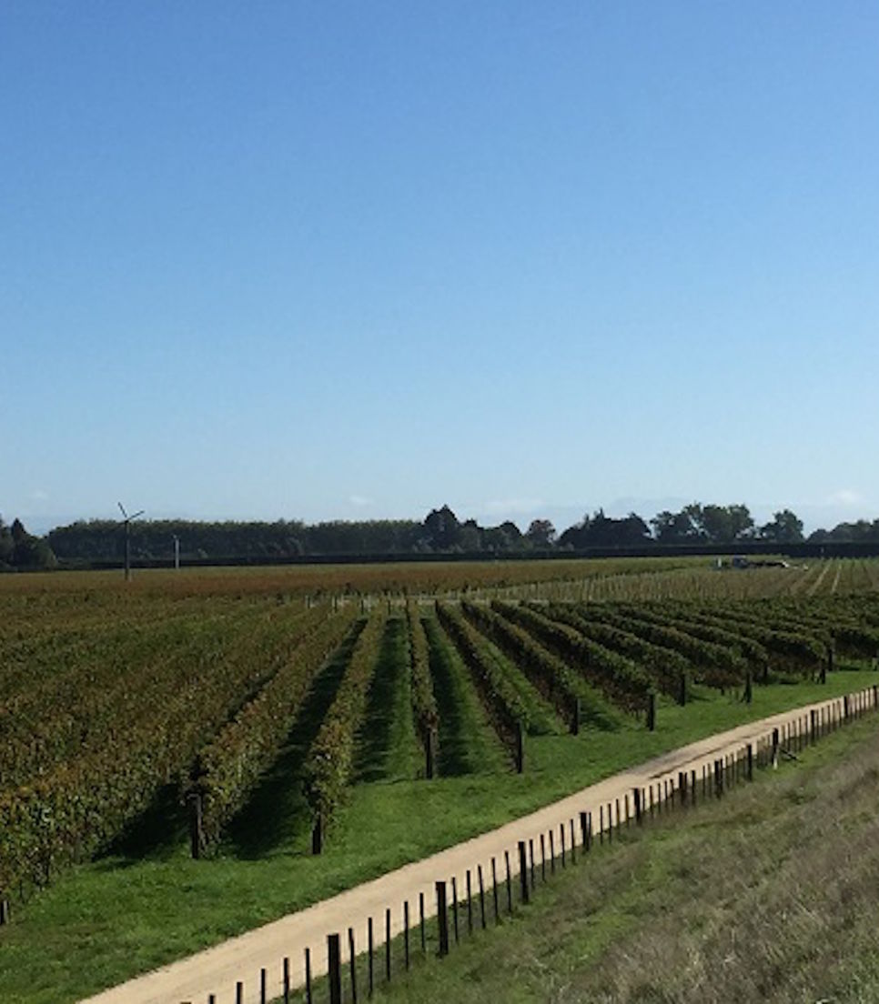Visit and sample the fine wines on offer as you journey through this spectacular region