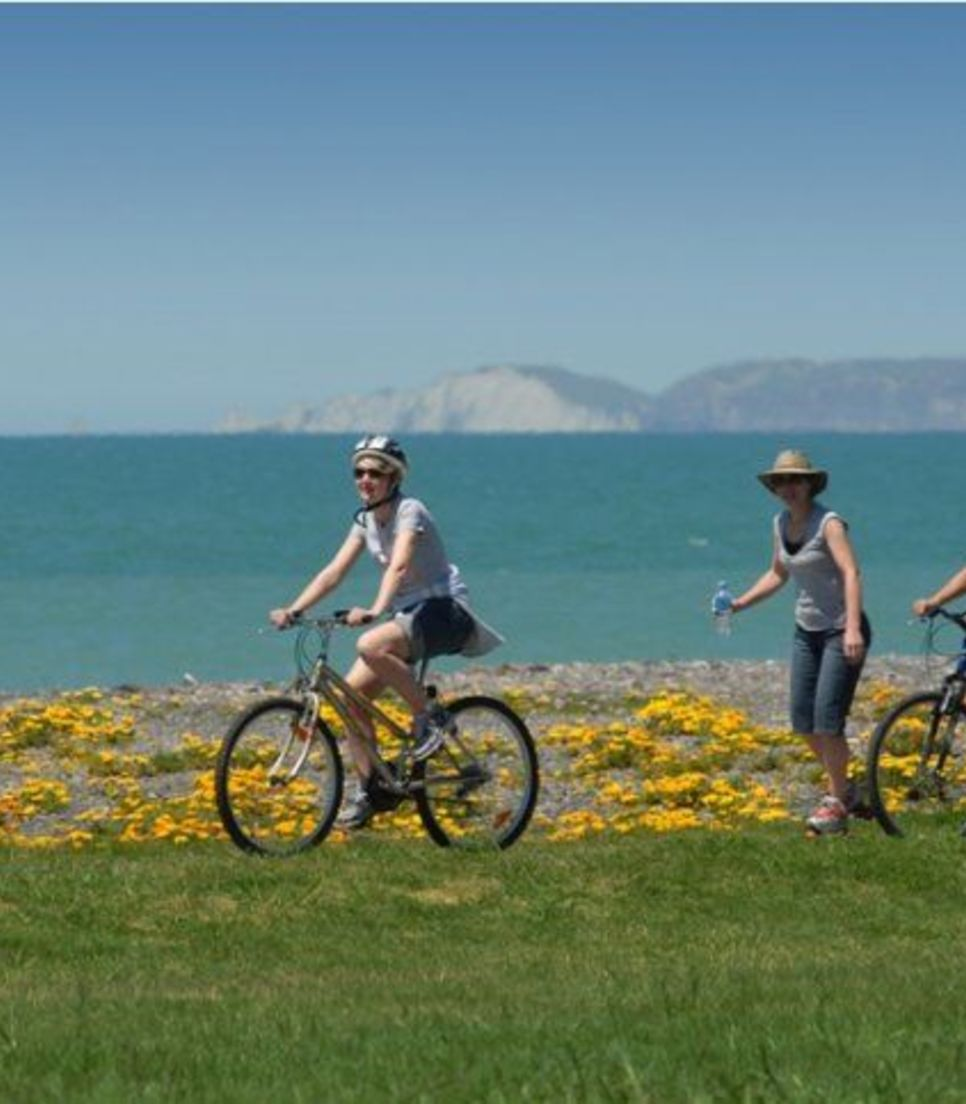 Leaving Napier, you'll head along the stunning Marine Parade with the sea by your side