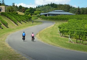 E-Bike Explorer: Havelock North to Ahuriri (via Cape Coast)