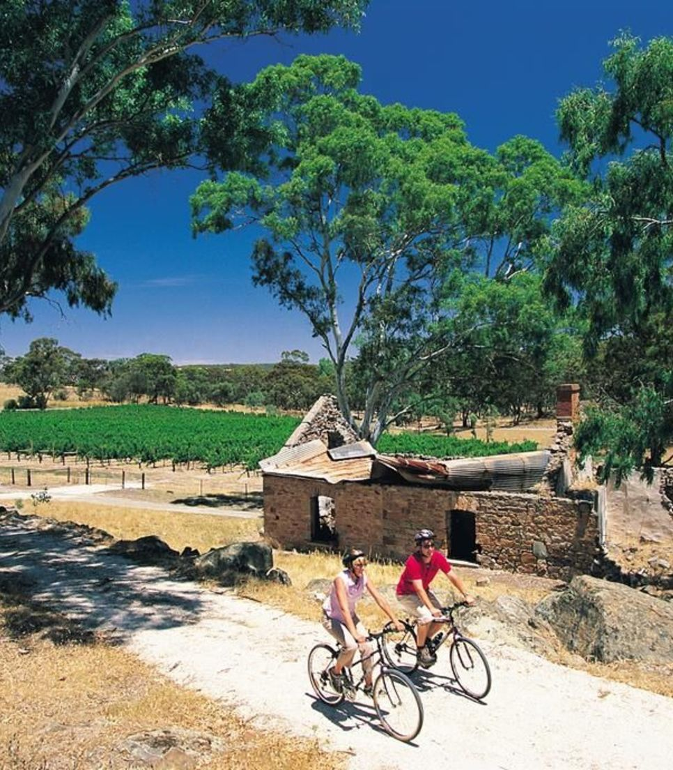 Bike through spectacular scenery on easy, flat and safe trails