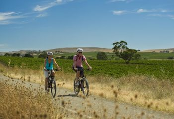 Tour de South Australia Vineyards (Self Guided)