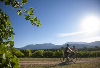 Tour de Grand Gourmet: Cycling Tour North East Victoria