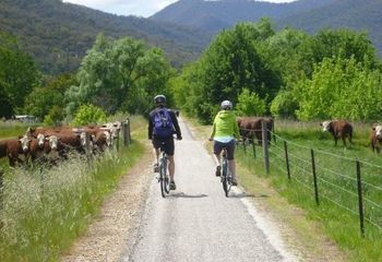 Murray to Mountains Rail Trail Cycling Tour (Self Guided)