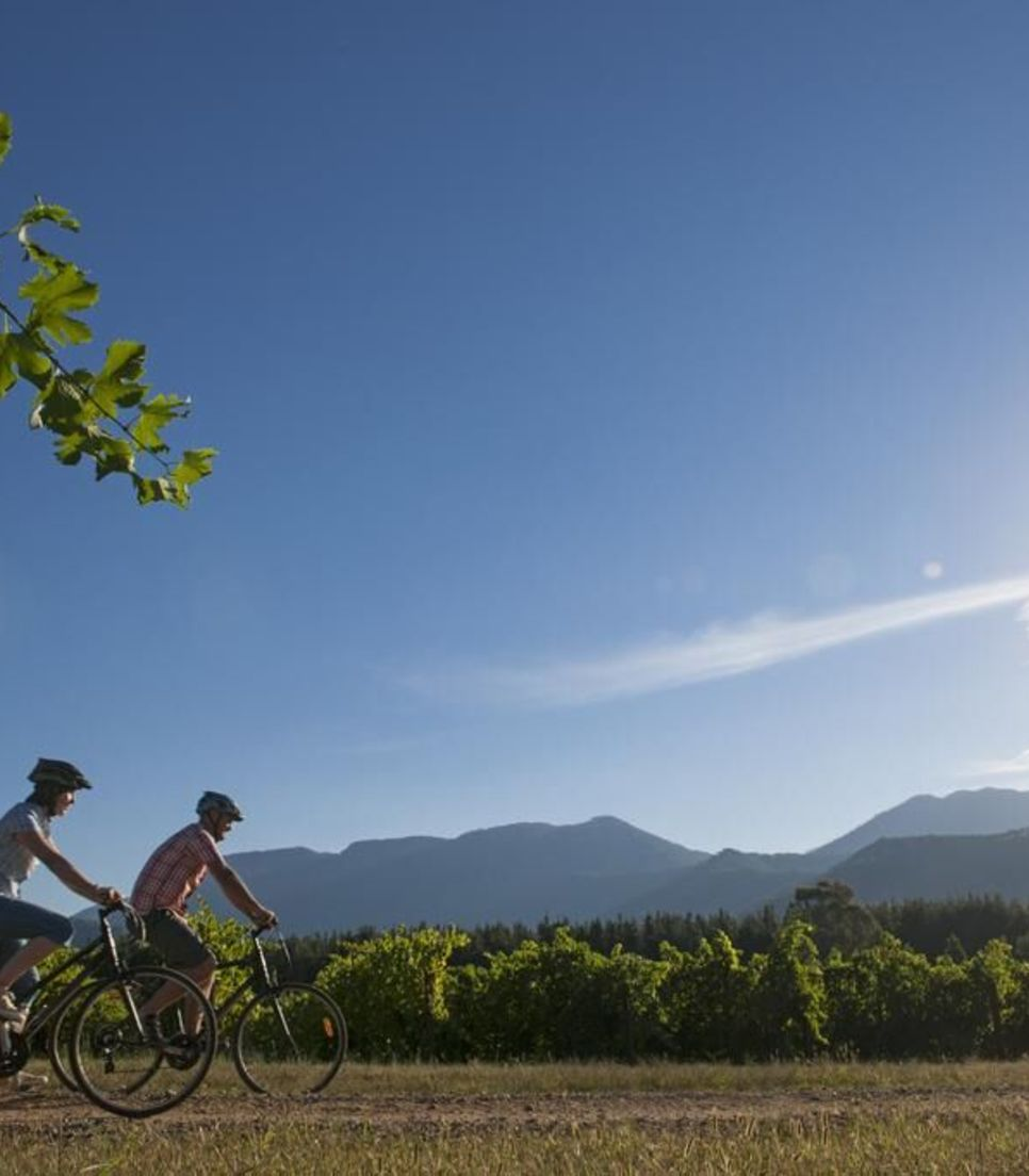 Leisurely bike along picturesque paths with far-reaching views
