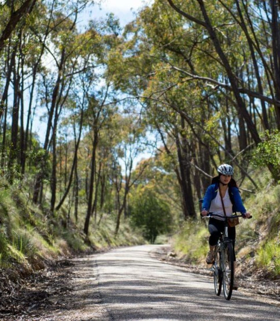 Immerse yourself in the serenity of the countryside and pedal along the relaxing trails