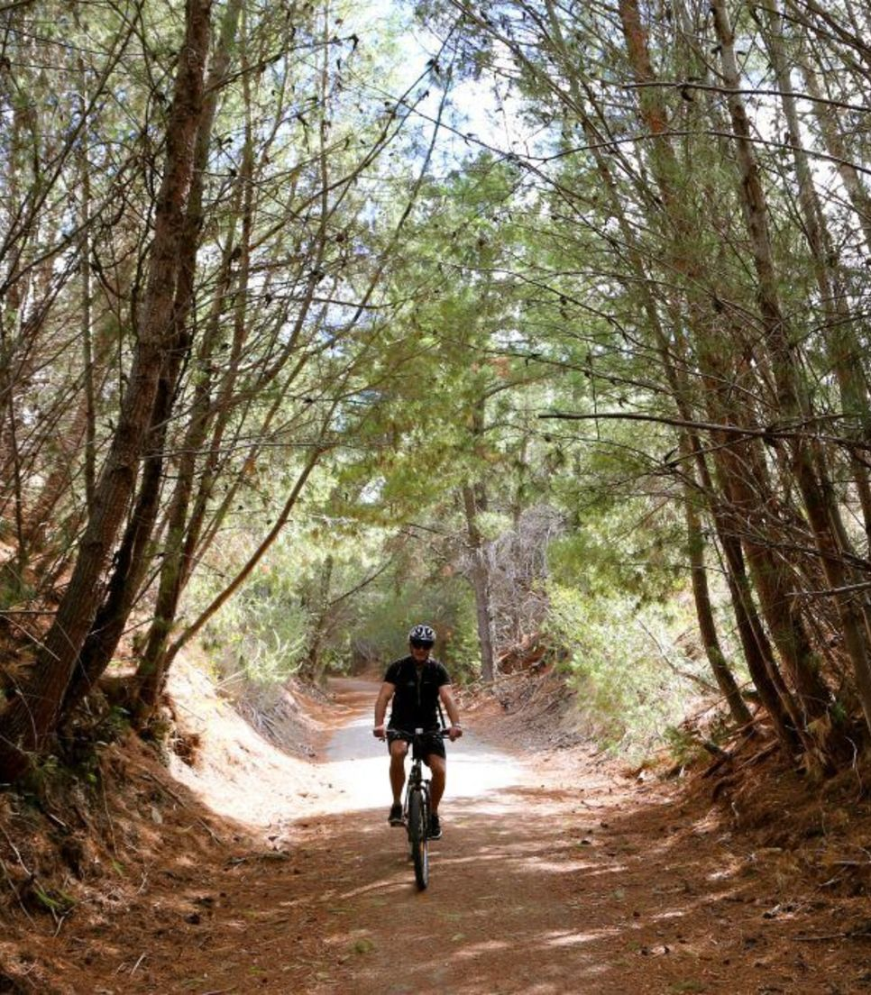 The tranquil and beautiful surroundings will evoke a sense of serenity as you pedal along the rural trail
