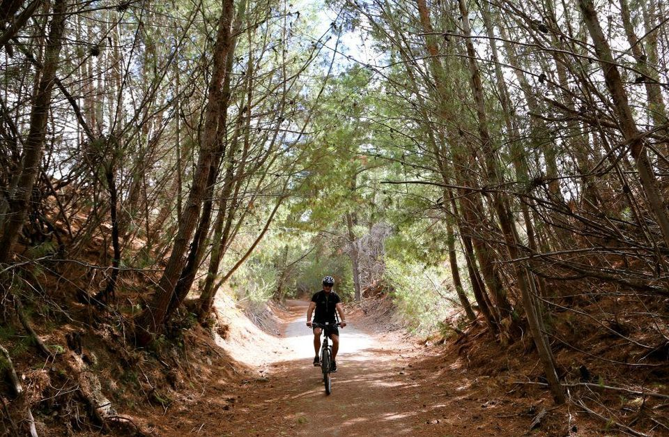 Tour de Riesling Rail Trail: Cycling Clare Valley