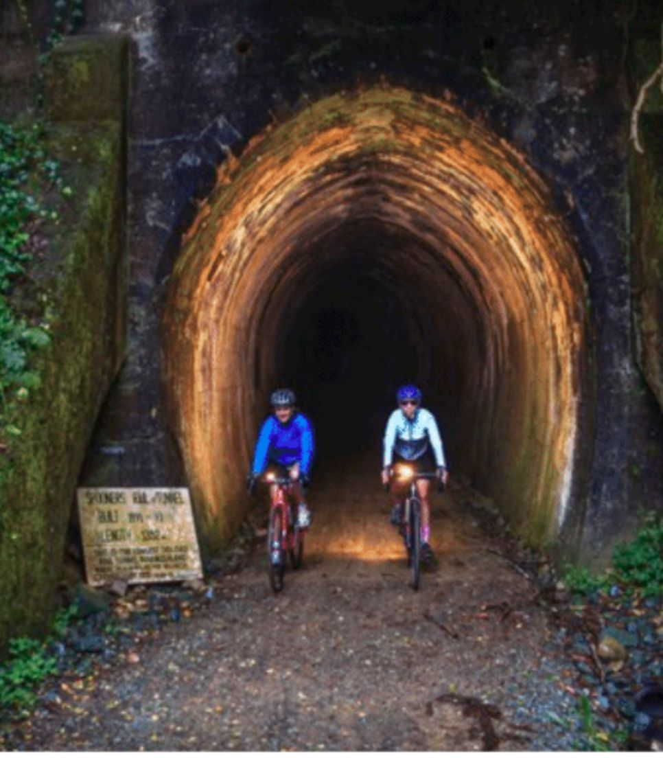 Ride through this lengthy and historic disused rail tunnel on your way to Kaiteriteri