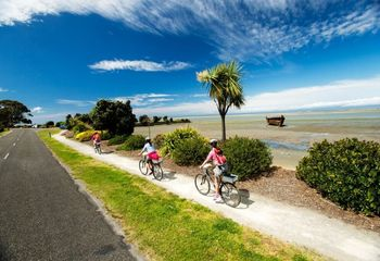 Tour de Great Taste Trail: Cycling Tour from Nelson