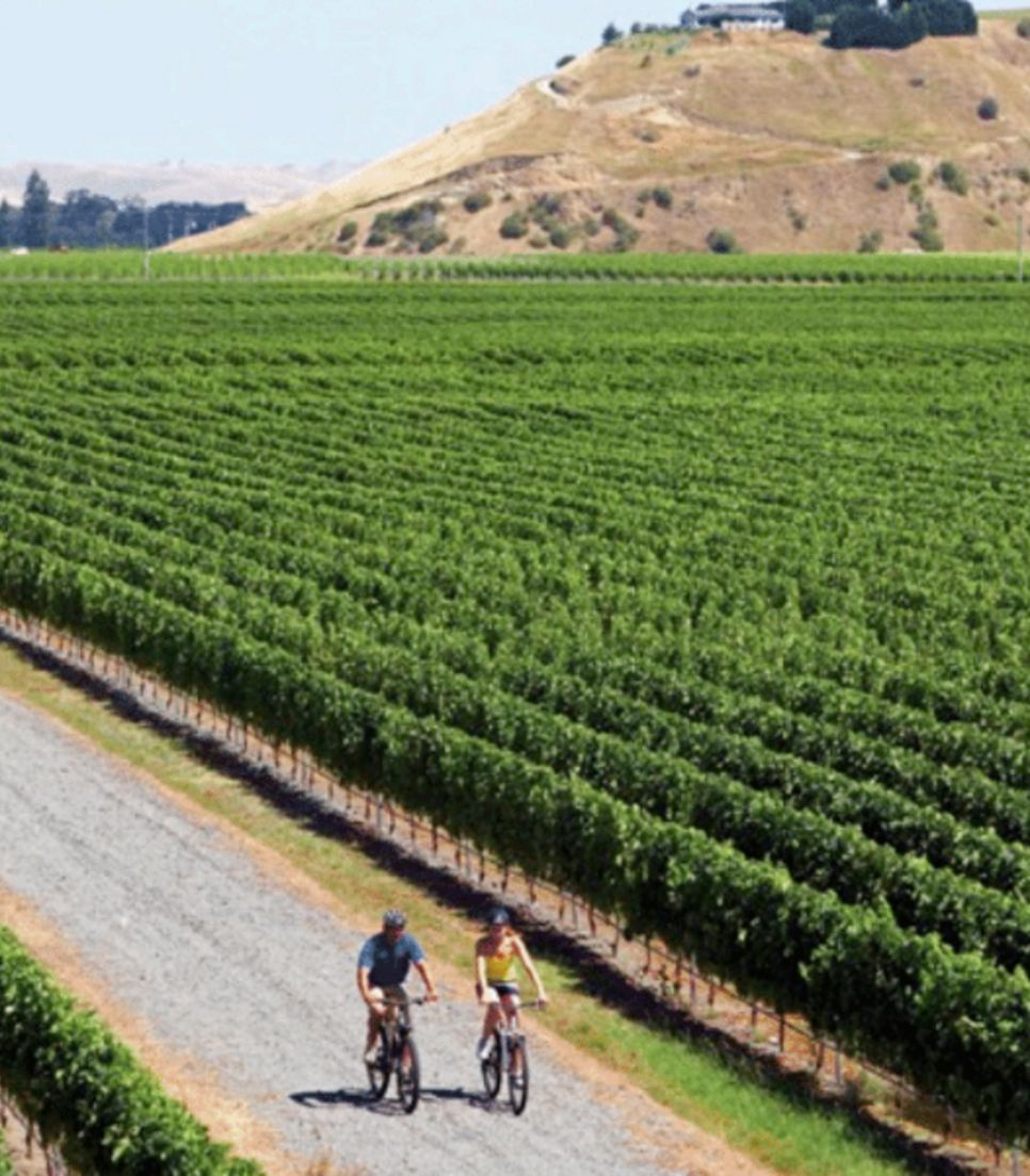 Pedal through gorgeous landscapes and taste the produce later