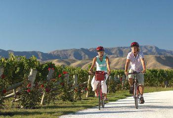 Tour de Hawke's Bay Estates: Cycling Tour Hawke's Bay