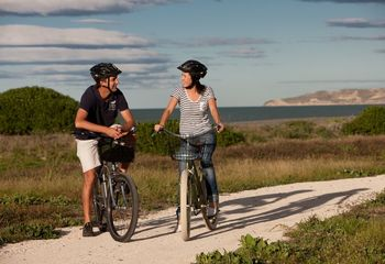 Tour de Cycle Wine Tour Hawke's Bay