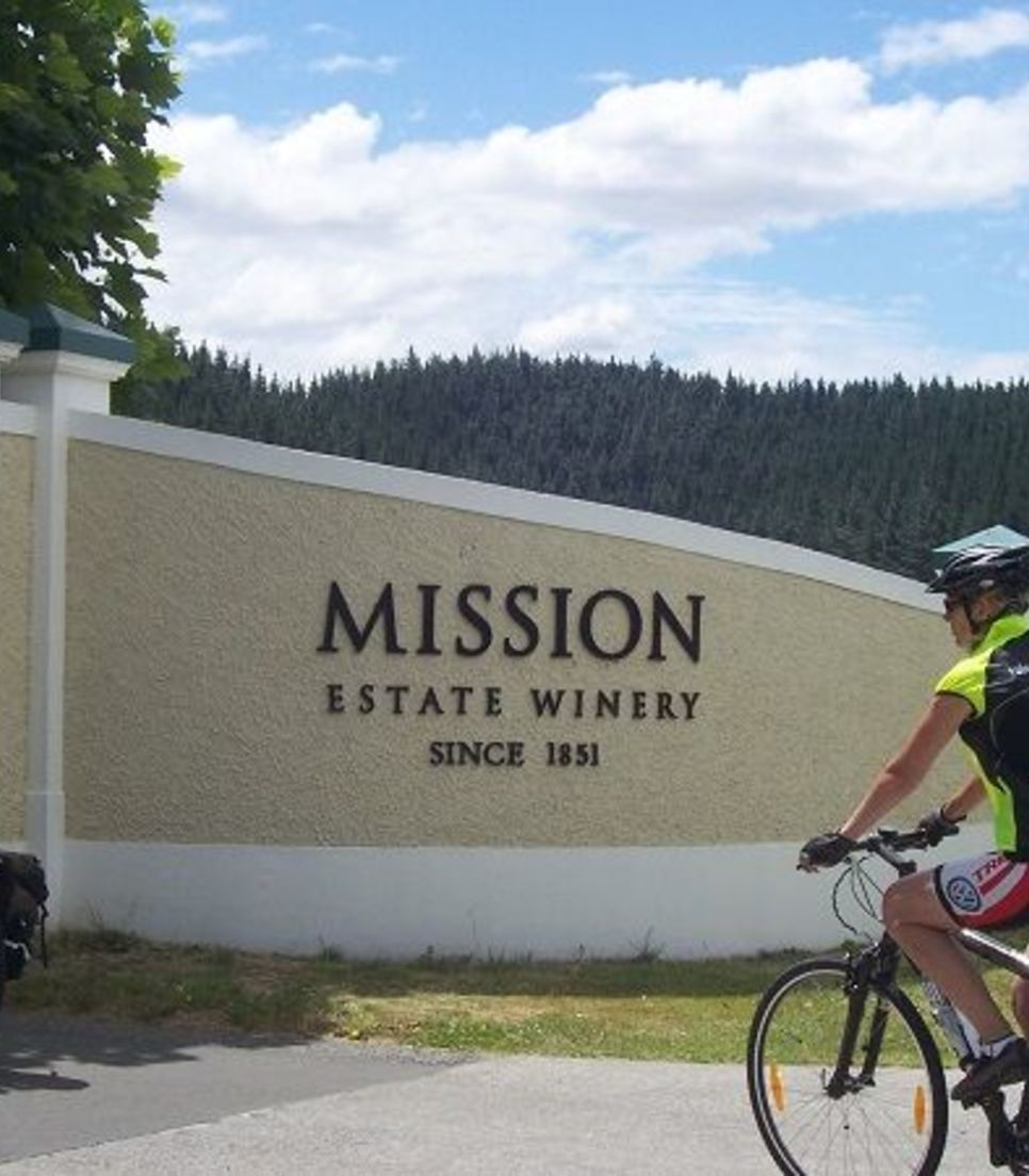 Spend the day riding through spectacular countryside and visiting wineries along the way