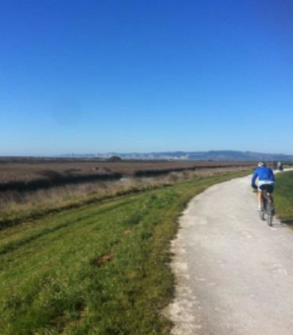 Bike through differing landscapes, from coastal paths, to farmland trails to vineyard tracks, all offering relaxing, safe riding with great views