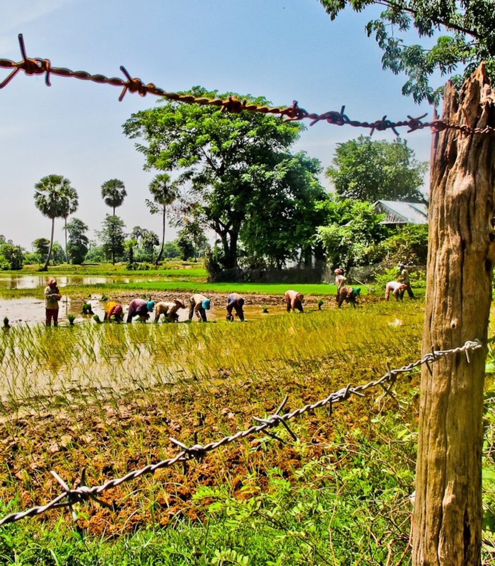 Cycle the backroads and get a glimpse of how Cambodians live