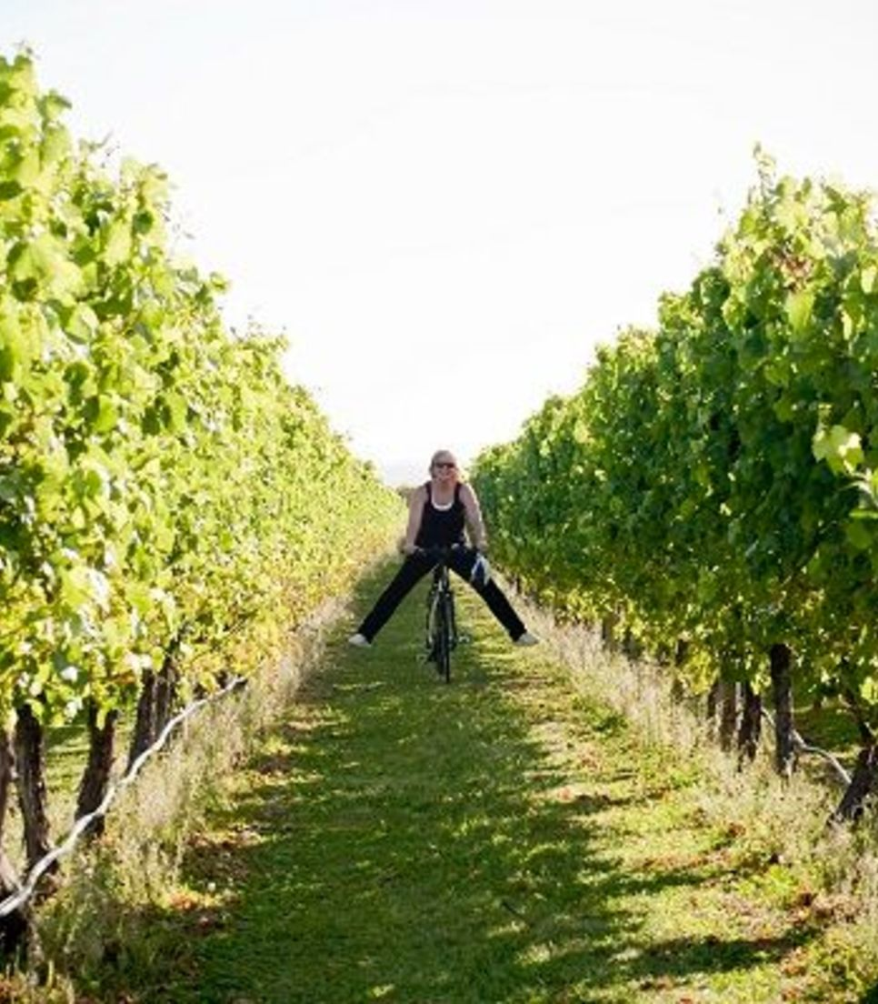 Explore the vineyards from the back of your bike
