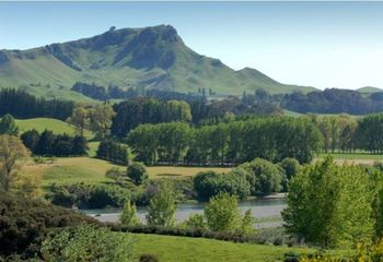 Havelock North and Cape Coast Wineries