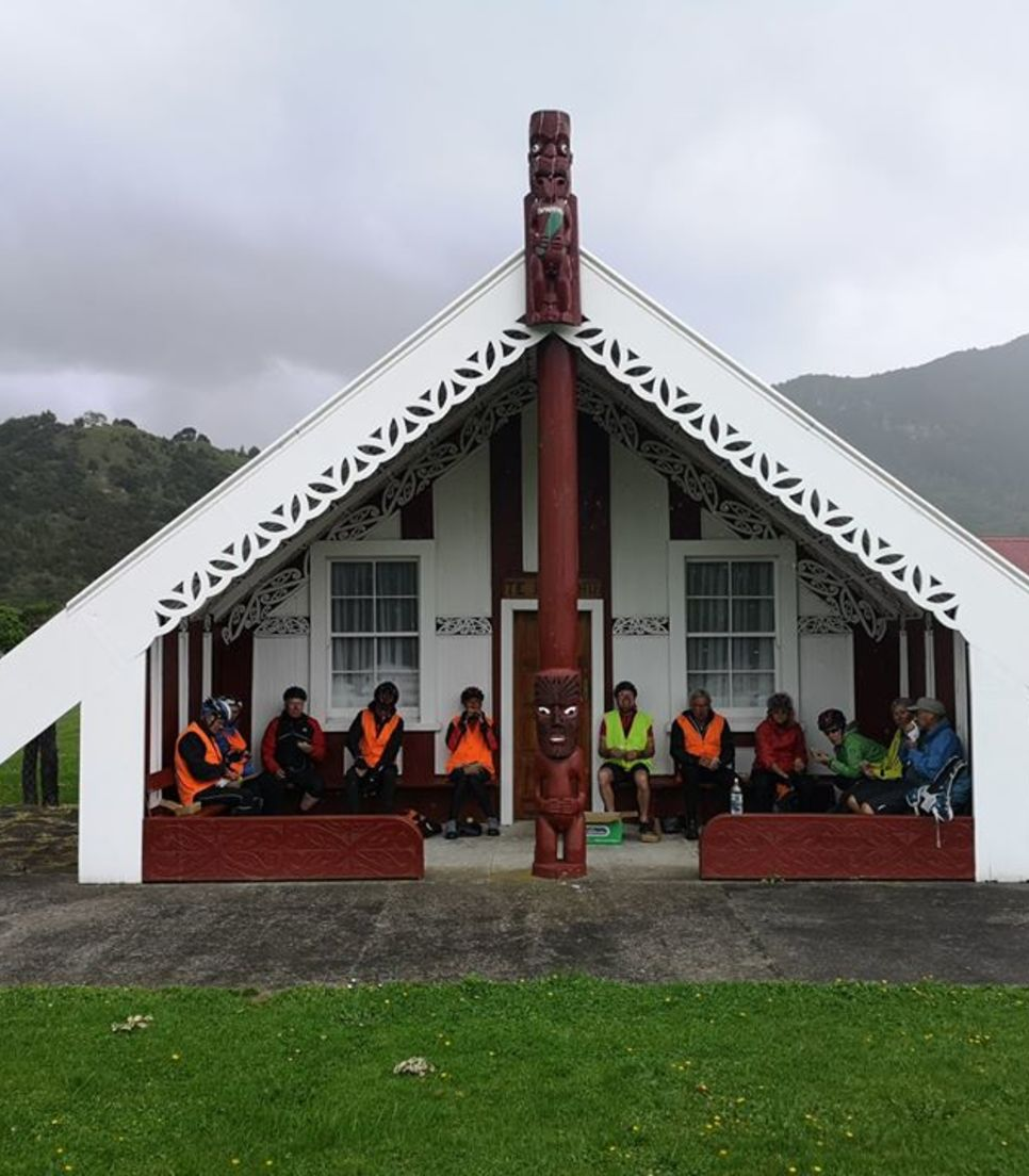Learn more about NZ's indigenous people and experience some Maori culture along the way