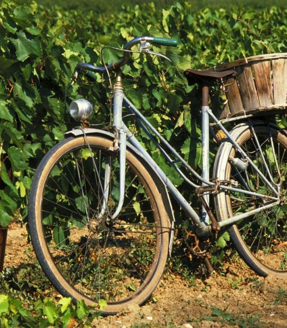 Enjoy the superb countryside as you cycle through this fertile land