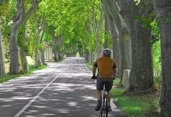 Cycling Tour Canal du Midi