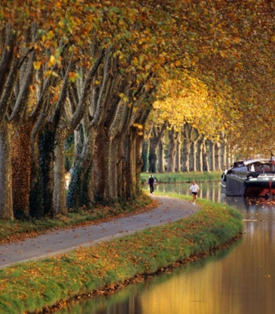 Explore the canal paths and tranquil beauty of this region