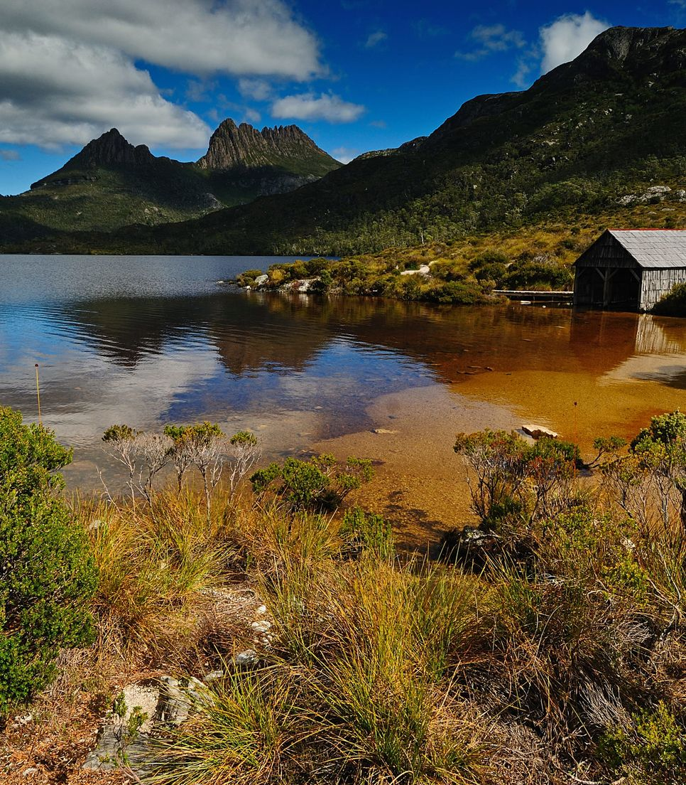 Explore the national parks of western Tasmania