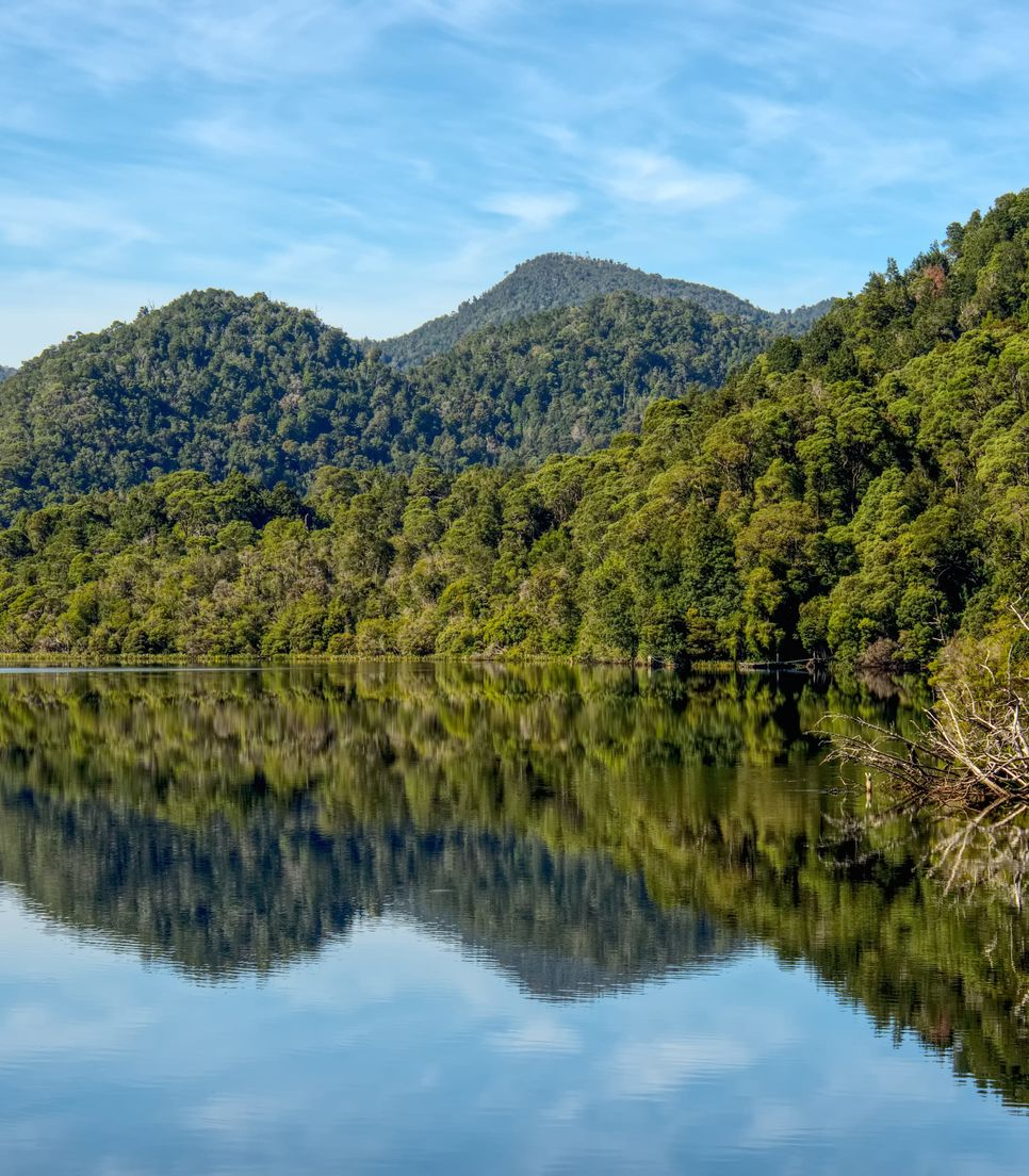 Discover the pristine Gordon River