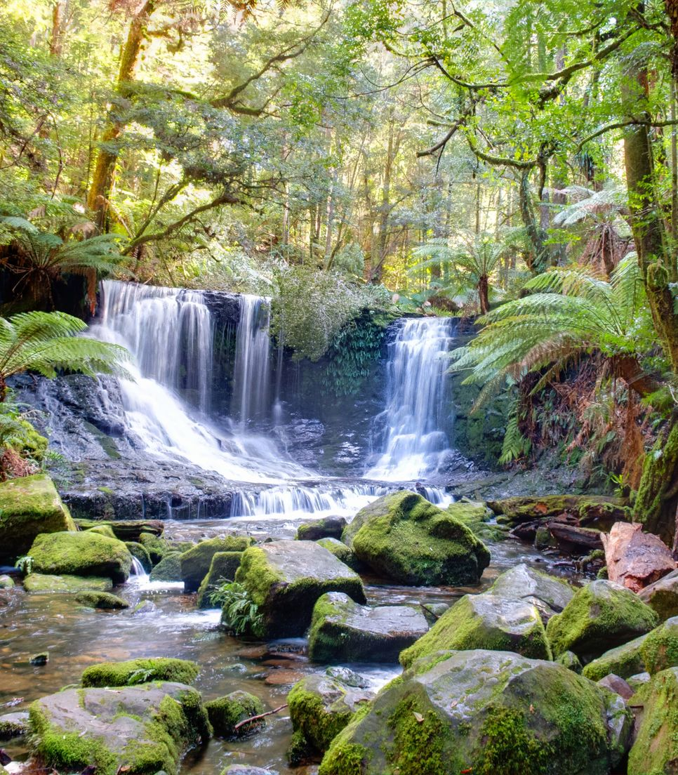 Visit the lovely Russell Falls in Mount Field National Park on day 11