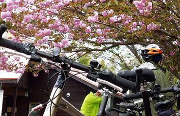 Kyushu Onsen to Onsen Image