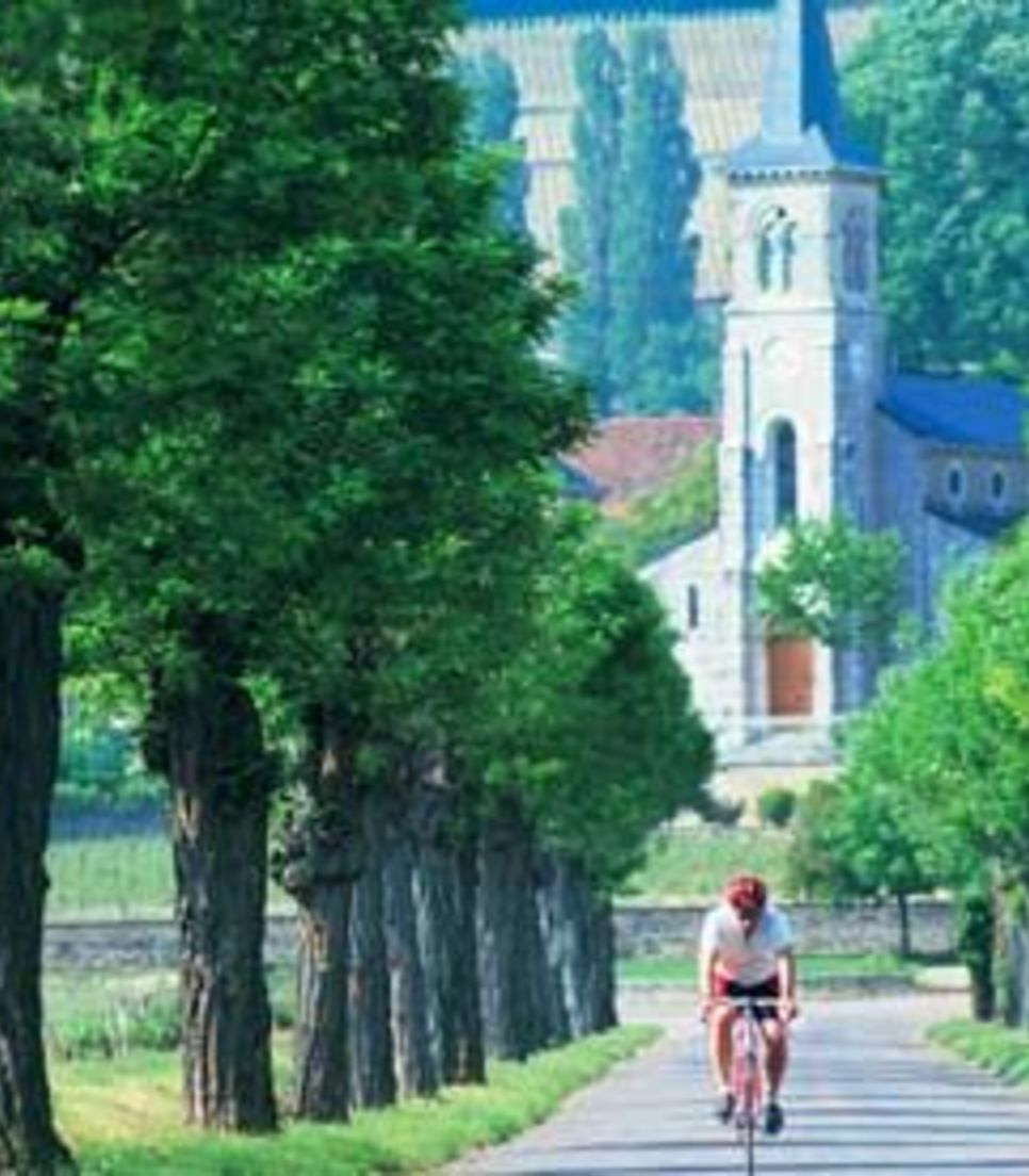Enjoy riding through the exquisite landscape covered on the tour