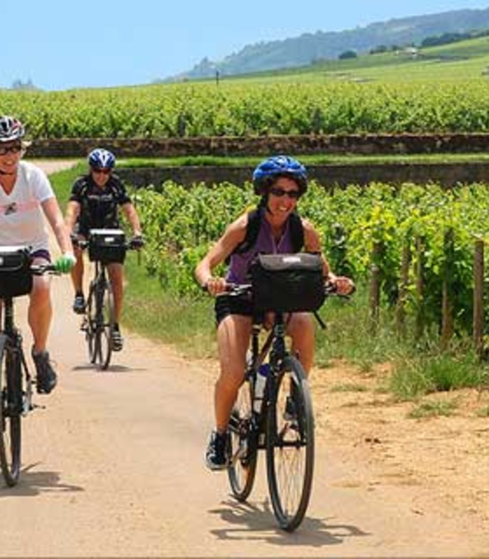 Enjoy exploring the Alsatian countryside by bike