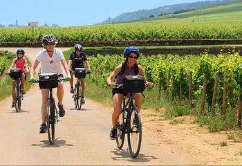 Cycling Tour Alsace