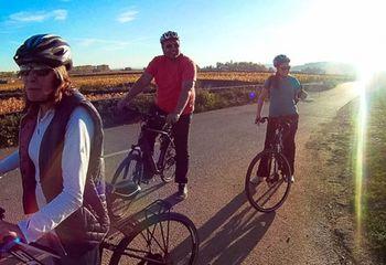 Burgundy Guided Bike Tour